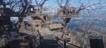 Treehouses 3.jpg